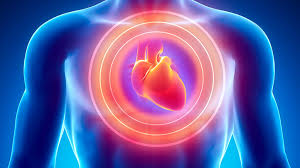 cardiologists-in-johannesburg